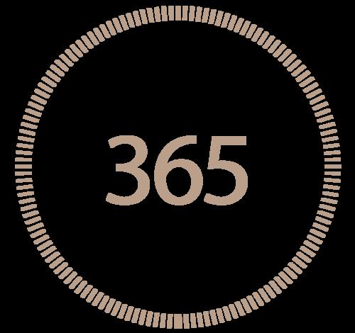 Online Shop: 365 Tage