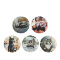 ergobag Klettie-Set Katzen 5tlg.