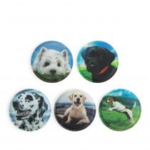 ergobag Klettie-Set Hunde