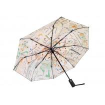 Regenschirm Rainmap Winterthur No. 2