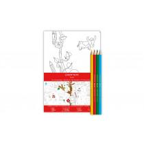 Caran d'Ache XXL Stammbaum Poster mit 4 Farbstiften